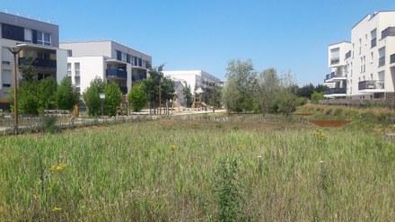 Yvelines : Espace Libre et Urban & Sens reprennent la maîtrise d'œuvre urbaine des Hauts de Rangiport