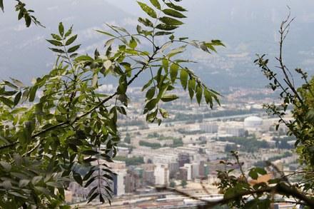Grenoble_Cuvette_polluee.jpg